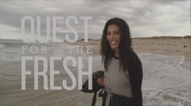 Quest for Fresh